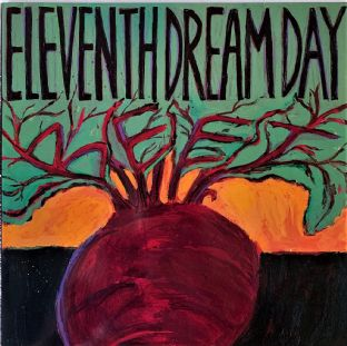 Eleventh Dream Day ‎- Beet (LP) (EX-/VG+)